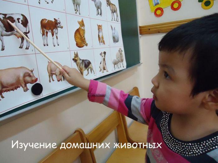 """Детский центр развития """"Золотой Дракоша"""" - Bilimland.kz"""
