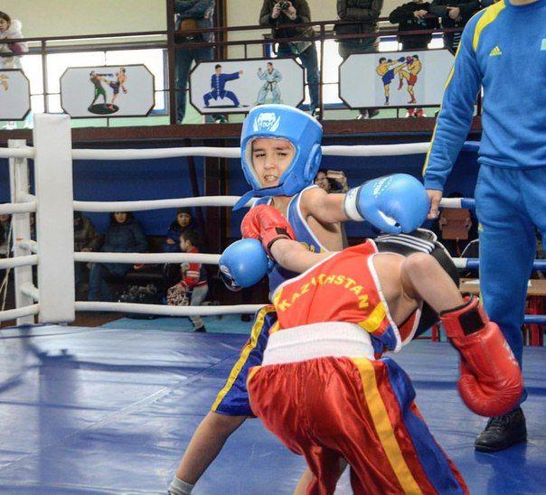 Barracuda Boxing Club (Yassawi) - Bilimland.kz