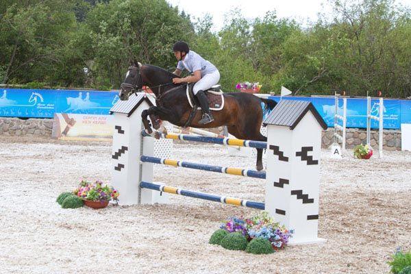 АЛТЫН-ТАЙ, конно-спортивный клуб - Bilimland.kz